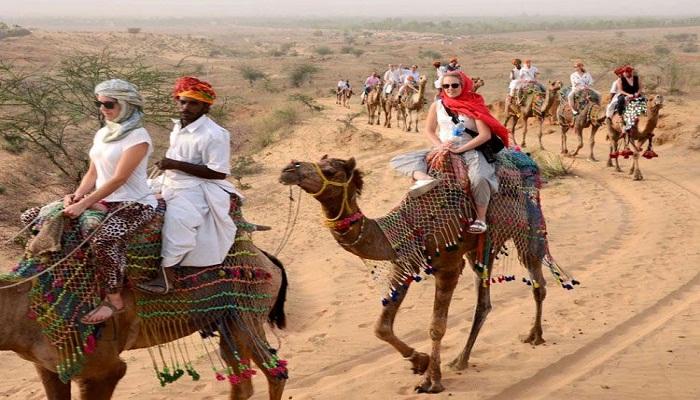 camel safari in jaipur
