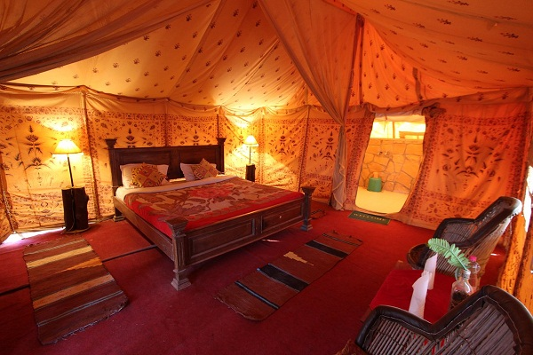 luxury stay at desert camp