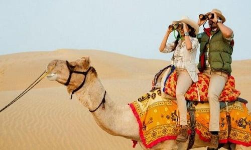 premium camel tour